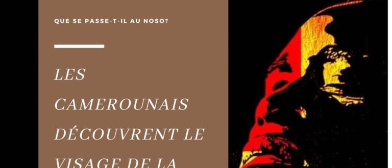 Article : Cameroun : les francophones  découvrent avec horreur la crise anglophone